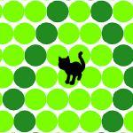 Circle The Cat